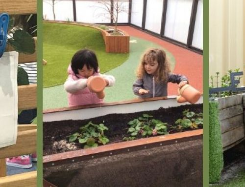13 Practical Steps Towards Sustainability in Early Education Centres